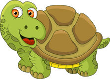 Funny turtle cartoon Royalty Free Stock Photos