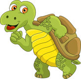 Funny turtle cartoon Stock Image