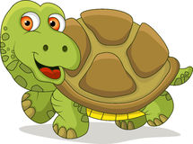 Funny turtle cartoon Royalty Free Stock Images