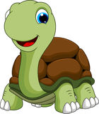 Funny turtle cartoon. A cute turtle with a cute smile Stock Images