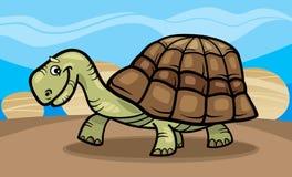 Funny turtle cartoon illustration Stock Image