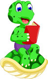 Funny turtle cartoon reading book Royalty Free Stock Photography