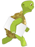 Funny Turtle. Courier. Stock Photography