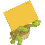 Funny Turtle. Delivery. Stock Photo