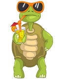Funny Turtle Drinking Cocktail. Stock Images