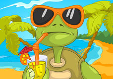 Funny Turtle Drinking Cocktail. Stock Photography