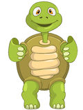 Funny Turtle. Funky. Stock Images