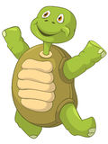 Funny Turtle. Jumping. Stock Photography