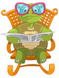 Funny Turtle Reading. Royalty Free Stock Images