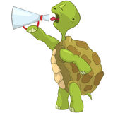 Funny Turtle. Screaming. Stock Image