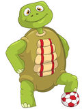 Funny Turtle. Soccer Player. Stock Photos