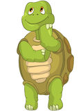 Funny Turtle. Thinking. Royalty Free Stock Image