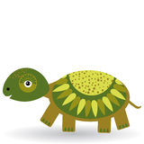 Funny turtle on a white background.  Stock Photography