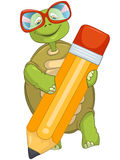 Funny Turtle. Writing. Royalty Free Stock Image