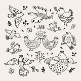Funny vector hand drawn birds. Decorative doodle birds with plants and flowers design elements Royalty Free Stock Photos