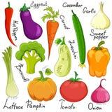 Funny vegetable cartoon isolated Stock Photos