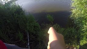 A fish suddenly caught by a man sitting on a lake bank in summer