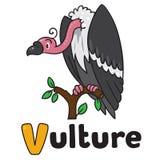 Funny vulture, illustration for ABC. Alphabet V Stock Photo