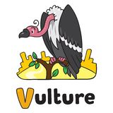 Funny vulture, illustration for ABC. Alphabet V. Children vector illustration of funny vulture sitting high on a branch above the Prairie. Alphabet V Stock Photography
