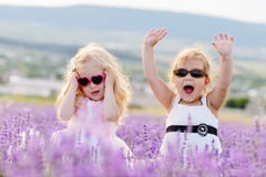 Funny walk in field Stock Photography