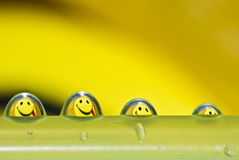 Funny water drops. Funny water droplets with smiley reflection Royalty Free Stock Photography