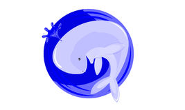 Funny whale. Blue whales swim in the ocean Royalty Free Stock Image