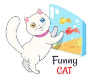 Funny White Cat Looking Aquarium with Fish Vector. Funny white cat looking at aquarium with fish, transparent tank with water and cute feline kitten in pink Royalty Free Stock Image