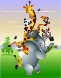 Funny Wild African animal cartoon Stock Image