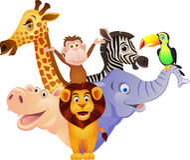 Funny wild animal Royalty Free Stock Photo