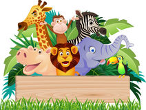 Funny wild animal Stock Images