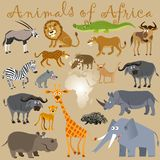Funny wild animals of Africa Stock Photo