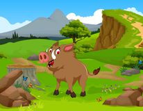 Funny Wild boar cartoon in the jungle with landscape background Stock Images
