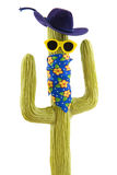 Funny wild west cactus Royalty Free Stock Images