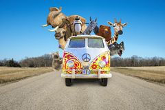 Funny Wildlife Animals, Road Trip, Vacation. Funny wildlife animals are riding in a VB hippie van bus on a road trip. An elephant, camel, zebra, bear, koala royalty free stock image
