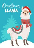 Funny winter card with a cartoon llama Vector Christmas illustration with text. New Year`s poster. Funny winter card with a cartoon llama Vector Christmas stock illustration