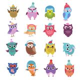 Funny winter owls birds cartoon vector characters Stock Photo