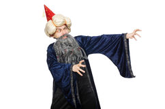 Funny wise wizard isolated Royalty Free Stock Photography
