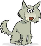 Funny wolf Stock Image