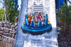 Funny woman raising hands in Infinity Falls at Seaworld Marine Theme Park. stock images