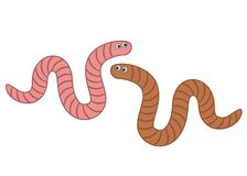Free Funny Worms In The Set. Royalty Free Stock Photo - 215625365