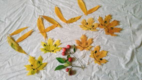 Funny yellow autumn leaves on a white background Royalty Free Stock Photos