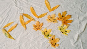 Funny yellow autumn leaves on a white background Royalty Free Stock Photo