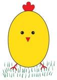 Funny yellow chicken Stock Photos
