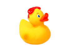 Funny yellow duck. Rubber yellow duck isolated on white royalty free stock photos