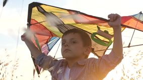 Funny young kid boy keeps vivid kite above his head standing in field at sunset summertime. Funny young kid boy keeps vivid kite above his head standing in the stock footage