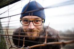 Funny young man with glasses and a beard looks out from behind the fence. Stock Images