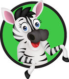 Funny zebra Royalty Free Stock Photo
