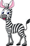 Funny zebra cartoon royalty free illustration