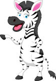 Funny zebra cartoon Stock Image