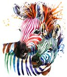 Funny zebra illustration with splash watercolor texture. rainbow background f vector illustration